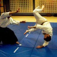 aikido-300x243